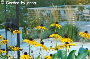Garden by anna - Tumba-12
